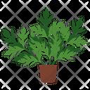 Mugwort Potted Plant Icon