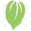 Mulberry Leaf Icon