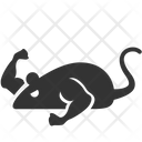 Mouse Experiment On Rat Mutant Rat Icon
