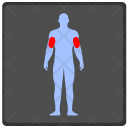 Muscle Brawn Trainings Icon