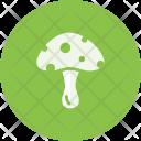 Mushroom Plant Spring Icon
