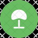 Mushroom Toadstool Fungus Icon