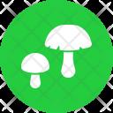 Mushroom Vegetable Plant Icon