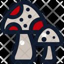 Mushroom Fungi Fungus Icon
