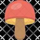 Toadstool Mushroom Vegetable Icon