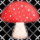 Mushroom Oyster Mushroom Fungi Icon