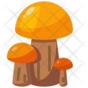 Diet Mushroom Nature Icon