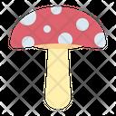 Mushroom Fungus Vegetable Icon