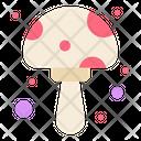 Mushroom Fungus Oyster Icon
