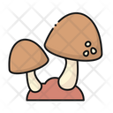 Mushroom Fungi Nature Icon