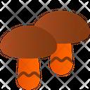 Mushroom Fungus Fungi Icon