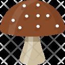 Mushroom Shiitake Fungi Icon