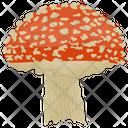 Mushroom Fungi Toadstool Icon