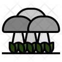 Fungus Mushroom Oyster Icon