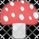Mushroom Food Edible Icon
