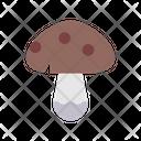 Autumn Boletus Fall Icon