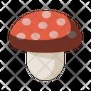 Fungi Fungus Mushroom Icon