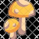 Mushrooms Food Vegan Icon