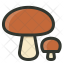 Mushrooms Fungi Boletus Icon