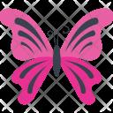 Myscelia Ethusa Specie Icon