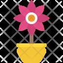 Narcissus Spring Seasonal Icon