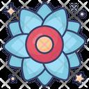 Narcissus Flower Garden Flower Icon