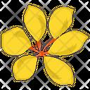 Narcissus Flower Generic Flower Blossom Icon
