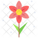Narcissus Icon