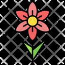 Narcissus Flower Icon