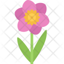 Narcissus Ecology Nature Icon