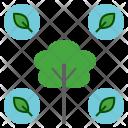 Natural Nature Tree Icon