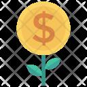 Nature Plant Moneytree Icon