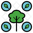 Nature Natural Tree Icon