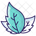 Leaves Eco Leaves Plant Leaves Icon