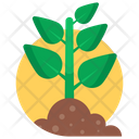 Gardening Plant Sprout Icon