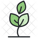 Nature Tree Ecology Icon