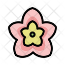Nature Botanic Pland Icon