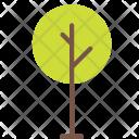 Nature Icon