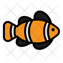 Nemo Fish Pet Icon