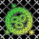 Nest Spring Egg Icon