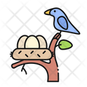 Nest Bird Egg Icon