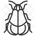 Net Winged Beetle Icon
