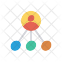 Network External Link Icon