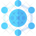 Network Web Networking Icon