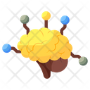 Neural Network Brain Network Artificial Intelligence Icon