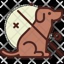 No Dog No Dog No Animal Icon