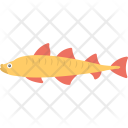 Northern Pike Fish Icon