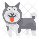 Norwegian Elkhound Dog Icon