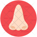 Nose Body Organ Body Part Icon