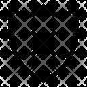 Shield Fail Icon